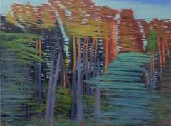 """Late afternoon forest, Richmond train, oil on panel, 30 X 40"""", 2016"""